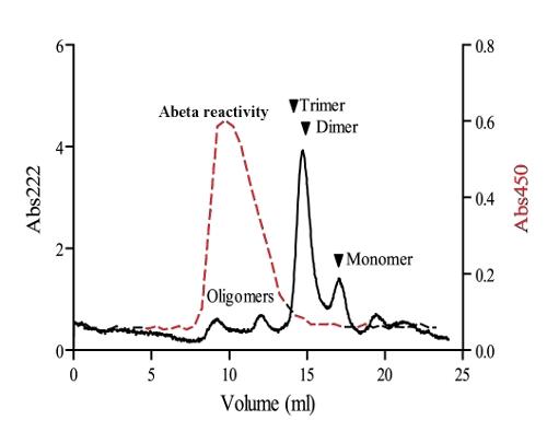 sandwich ELISA using ABeta oligomer-specific antibody