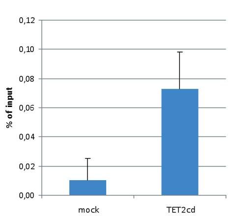 DIP using polyclonal anti-5-fC | 5-formylcytosine antibodies