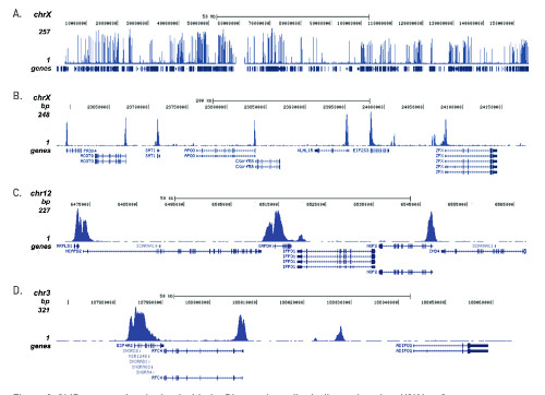 ChIP seq using anti-H3K4me3 | histone H3, trimethylated lysine 4 (H3K4me3) polyclonal antibodies