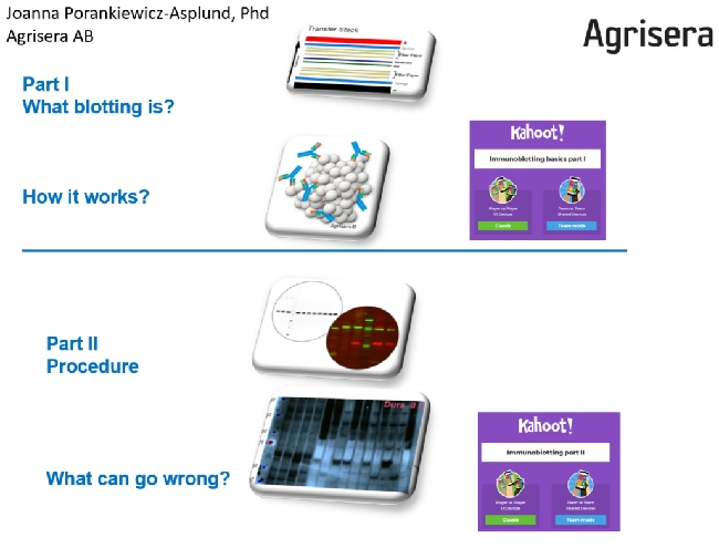 Agrisera Western Blot lecture