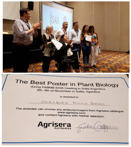 Agrisera Best Poster Award on SAIB 2019 Argentina
