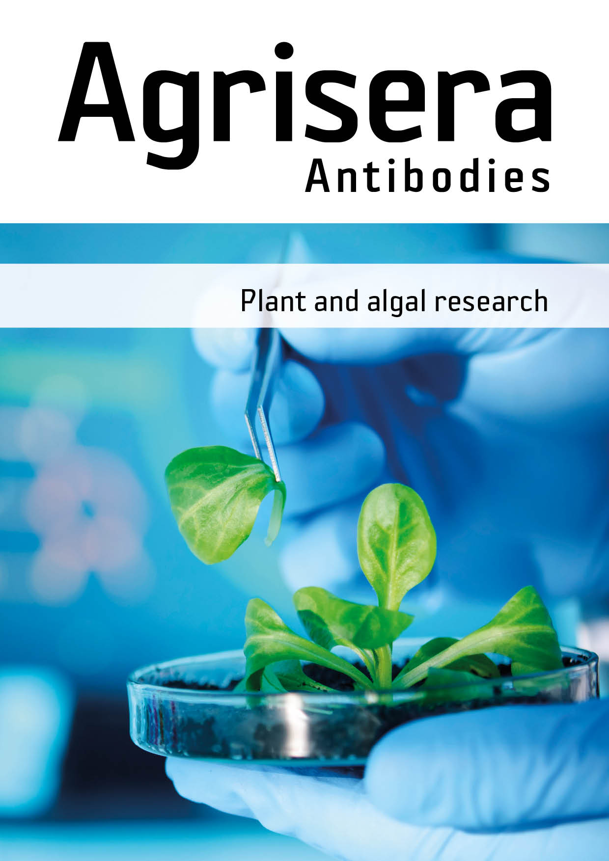 Agrisera plant and secondary antibody product catalog