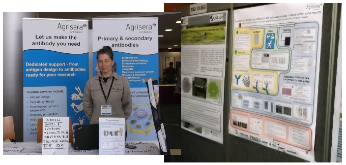 Agrisera on EPSO/FESPB 2016 meeting