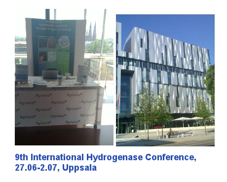 Agrisera exhibitingduring 9th Hydrogenase conference