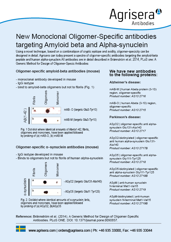 Alzheimer's antibodies flyer