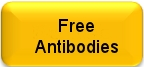 Free Arabidopsis and Poplar Antibodies available for testing