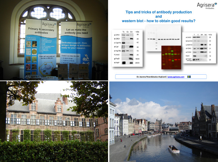 Peptide signalling meeting in Ghent 2015
