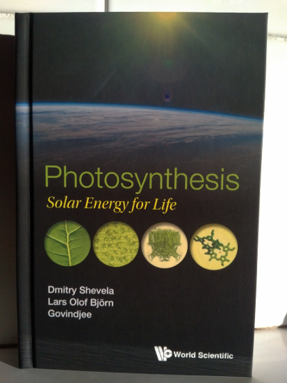 Photosynthesis Solar Energy for Life
