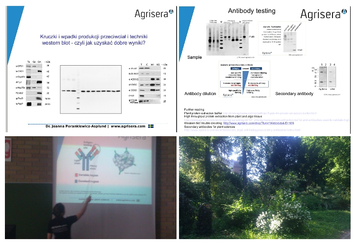 Agrisera western blot seminars in Poland