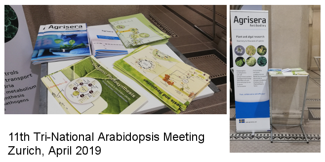 Tri National Arabidopsis meeting 2019