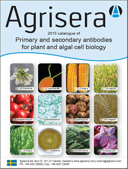 Agrisera Plant Antibody Catalog 2015 for download